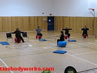 Cia Tweel stability ball workshop